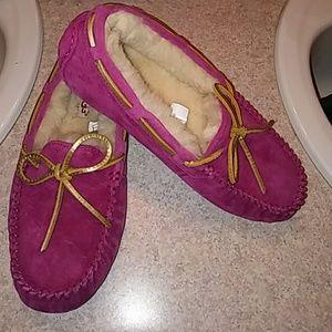 Ugg Dakota Shoes